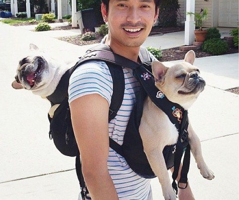 dog-carrying-backpack-1-640x533